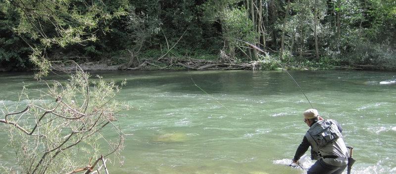 Guide pêche mouche Garonne