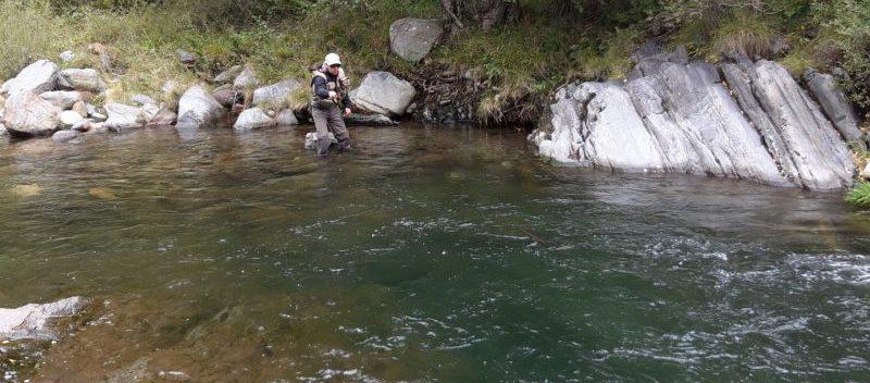 Guide pêche truite Pyrénées