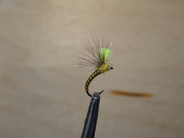 Guide pêche pyrénées