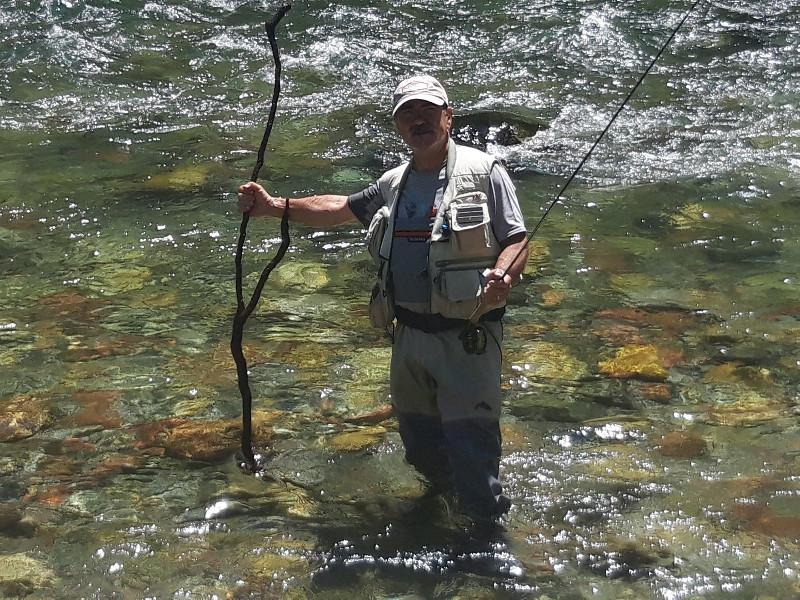 Pêche truite Pallaresa